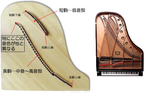ピアノの駒と響板